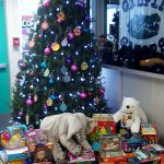 giving-tree-gifts2016-4