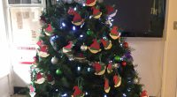 Our Christmas tree has been set up in the foyer andwe are asking for your help in making the holidays better for children in a neighbouring school in Burnaby. We […]